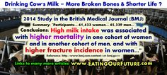 Dairy Consumption: Higher Rates of Mortality, Cancers, Bone Fractures, CVD, Parkinsons & Hormone-related Diseases. Health Memes, Health Diet, Bone Fracture, Milk And More, Diet Meme, Degenerative Disease, Medical Journals, Study Quotes, Best Diets
