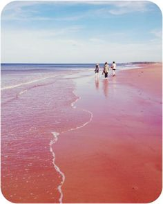 Savage Harbour Beach by East Coast Travel, East Coast Road Trip, Pei Canada, Canada Eh, Red Sand Beach, Pink Sand, Places To Travel, Places To See, East Coast Canada