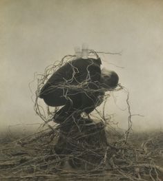 Robert and Shana Parke Harrison