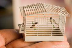 Tiny Ter Miniatures : birdy