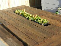 Sukkulenten Pflanzen im Garten Esstisch integriert