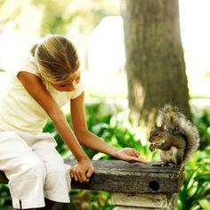 Squirrel Nesting Box Instructions