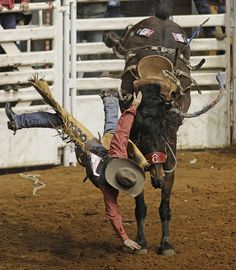 """Travis Sheets sails off of """" Coffee Bean"""" in saddle bronc  riding, uninjured"""