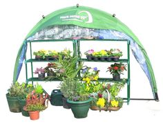The HortiHood 90º shown open and loaded with plants. Cutout of still from video.