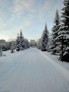 Oulun Yliopisto, Finland, Oulu, 2011