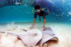 Urlaub in Mexico | Xel-Ha, Quintana Roo - Urlaubsreise.tips | Mexiko Reiseportal & Reisefuehrer