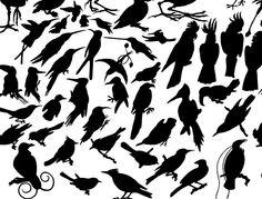 small bird tattoo designs - small-bird-tattoo-designs.jpg