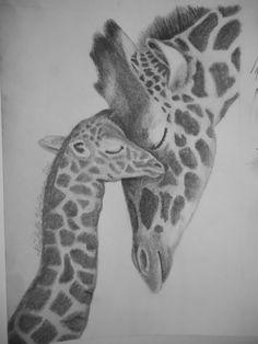 Giraffe Drawing   Giraffe and Baby Pencil Drawing   drawings