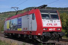 CFL 4017