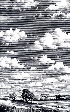 "Bill Sanderson - Cumulus, illustration for ""The Cloud Spotter's Guide"""