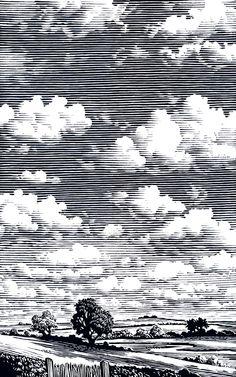 "Bill Sanderson - Cumulus, illustration for ""The Cloud Spotter's Guide"""