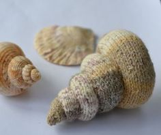 Free knitting pattern for Spiral Shell