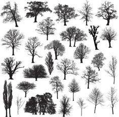 Vectores libres de derechos: Winter tree silhouette collection