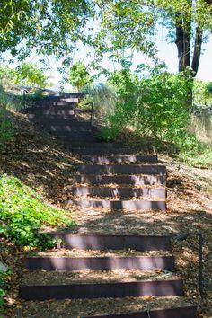 Healdsburg California garden Arterra Landscape by Mimi Giboin Landscape Stairs, Landscape Design, Garden Design, Steep Hillside Landscaping, Front Yard Landscaping, Landscaping Ideas, Acreage Landscaping, Landscaping Melbourne, California Garden