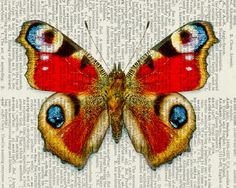 Simply beautiful! Would be easy to make.Butterfly  Peacock butterfly  printed on old page from by FauxKiss, $12.00