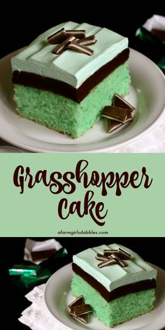 Grasshopper Cake from afarmgirlsdabbles. - A stunning dessert that's been a longtime family favorite, one I've enjoyed nearly all my life. This grasshopper recipe is mint and chocolate fudge perfection! Informations About Grasshopper Cake Mini Desserts, Easy Desserts, Delicious Desserts, Tiramisu Dessert, Oreo Dessert, Cupcake Recipes, Baking Recipes, Dessert Recipes, Chocolate Fudge
