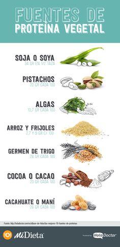 ¿Qué alimentos tienen proteína vegetal?
