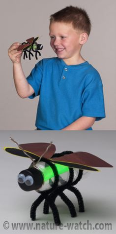 Insect Craft Projects & Activities For Teaching Kids About Insects | Insects Act