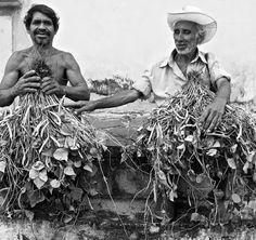 Google+ / Vendedores de frijoles en Suchitoto, El Salvador