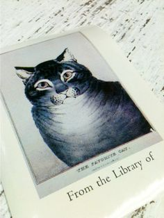 Ex Libris,Book Plate,Name Plate,The Favorite Cat by beachbabyblues, $22.00