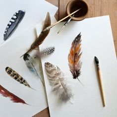 How to paint a feather