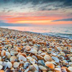 «Ракушечный закат на берегу моря #natgeoru #natgeo #photo_russia #поход #фототур #wildcrimea #instacrimea #instagramrussia #крымскиегоры #landscape #пейзаж…»