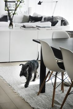 black, grey and white living & dining room with a cutie via Trendenser