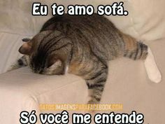 www.quinta feira dia dos gatos.com | Imagen Para Facebook Gato Garfield Te Amo | Pelauts.Com