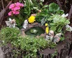 Superb ... Fairy Garden From My ...