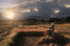 Photodropouts Filipino, This Is Us, Mountains, Nature, Photography, Travel, Naturaleza, Photograph, Viajes