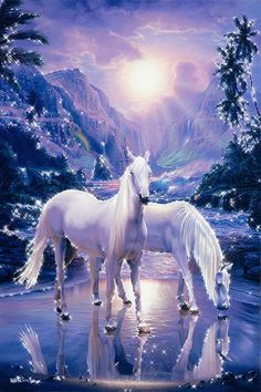 gif horse images | It is the difficult horses that have the most to give you.