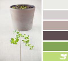 Sprouting Hues - http://design-seeds.com/index.php/home/entry/sprouting-hues1