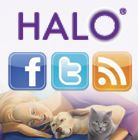 TWITTER BUZZ ABOUT HALO, EARLY MAY 2012  check this out at www.petsuppliesonlineuk.com