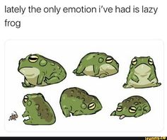 Lately the only emotion i've had is lazy frog - iFunny :) Stupid Funny Memes, Funny Relatable Memes, Haha Funny, Funny Cute, Fuuny Memes, True Memes, Funny Gifs, Animal Memes, Funny Animals