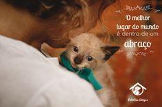 Se você também acha que o melhor lugar do mundo é dentro de um abraço, entre em contato com as @patinhasamigas para saber mais sobre nossos gatinhos para adoção (SP e ABC).  Facebook.com/patinhas.amigas.causa Instagram @patinhasamigas Email adotarCAT@gmail.com WhatsApp 11 9 9705-0925