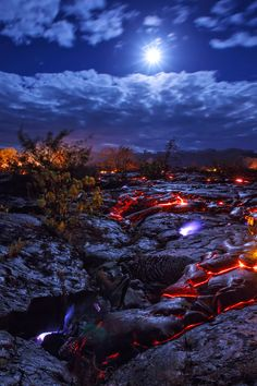 Seeping methane burns a bright blue as lava advances through a forest on a moonlit night, Hawaii Island