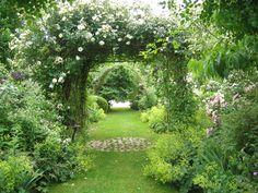 Le Jardin de Chantal et Alain (Sologne) - Album photos - Mon jardin de roses anciennes