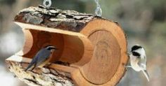 We have collected a great list of DIY birdfeeders that will instantly beautify your porch or make the perfect gift. They are easy to make and are great for gett