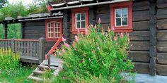 LITT VILT: Det er ikke mange blomstrende busker og trær som skal til før området rundt hytta blir litt triveligere.