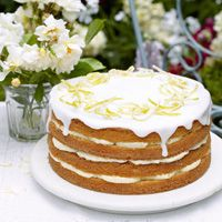A glorious lemon cake with zesty lemon cheesecake icing. From Mary Berry Cooks, this impressive citrus cake recipe is decorated with delicate candied lemon. Mary Berry Lemon Cake, Citrus Cake, Lemon Recipes, Sweet Recipes, Mary Berry Cooks, Merry Berry, British Baking, Lemon Cheesecake, Cheesecake Desserts