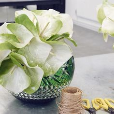 Keep your arrangements simple when using coloured crystal. The sumptuous green colour of the large Angled Rose Bowl from the Fleurology collection comes alive, when adorned with the muted greens of the anthurium. @mcqueensflowers  #FloralMasterclass #LiveACrystalLife