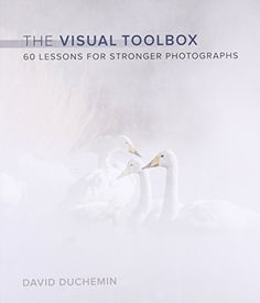 The Visual Toolbox: 60 Lessons for Stronger Photographs (... https://www.amazon.com/dp/013408506X/ref=cm_sw_r_pi_dp_x_g5VdAbS6SMDPS