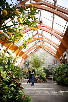 Greenhouse Perfect For Winter Wedding Engagement Photographer Boylston Ma