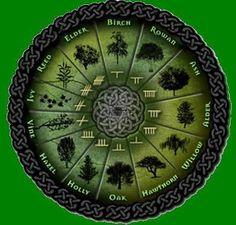 Celtic druid tree astrology and zodiac signs. Celtic Signs, Celtic Symbols, Celtic Knots, Druid Symbols, Celtic Words, Irish Symbols, Celtic Tree, Irish Celtic, Celtic Mandala