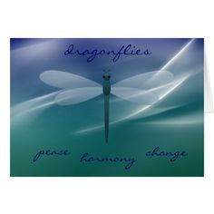 Dragonfly Spiritual Meaning | Dragonfly Meaning Quotes Your Dragonfly Meaning
