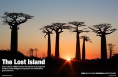 The Lost Island: our feature on #Madagascar in WildJunket Magazine Apr/May2012