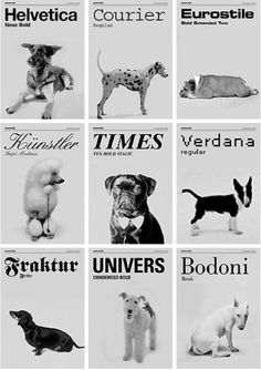 Fonts as dogs via Decoded Stuff