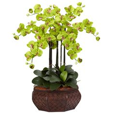 Nearly Natural 1201-GR Large Phalaenopsis Silk Flower Arrangement, Green -- You can find more details by visiting the image link. (This is an affiliate link)