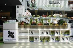 Quiosque no Centro Comercial Alegro Kiosk Design, Hall Design, Stand Design, Booth Design, Kiosk Store, Mall Kiosk, Mobile Kiosk, Vendor Cart, Supermarket Design