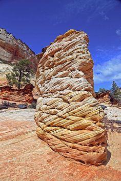 Zion National Park, Etched Sandstone   Flickr